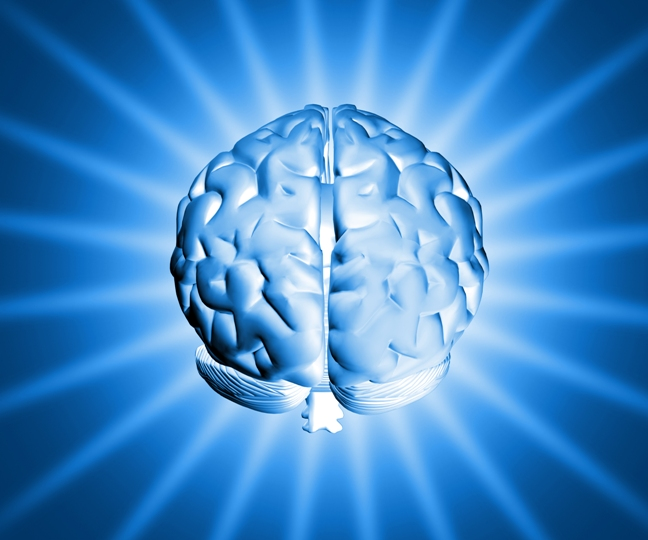 Desarrollo neurológico