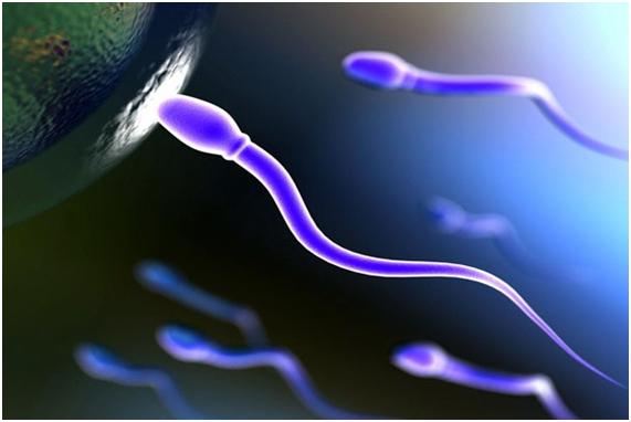 Más Tele, Menos Esperma