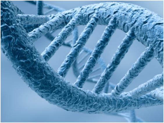 Extrae tu propio ADN