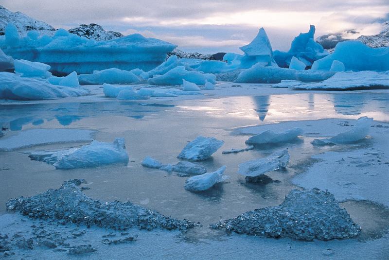 El Ártico se vestirá de verde