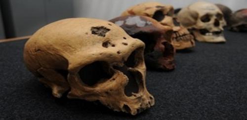 Antropólogos de la UNAM y la Universidad de Georgia trabajan en conjunto en un nuevo descubrimiento arqueológico