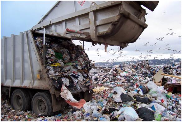 La biotecnología da respuesta al problema de los residuos sólidos