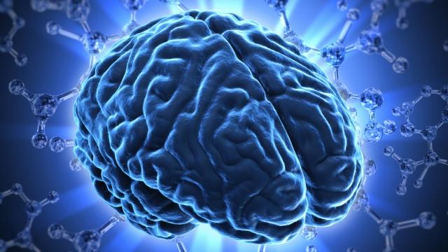 Fuga de cerebros, la diáspora del conocimiento