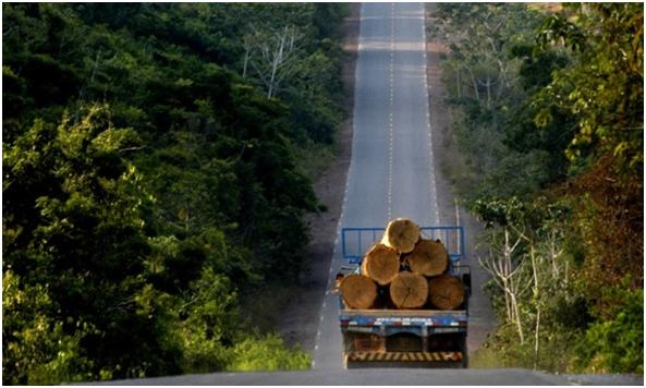 Deforestación en la Amazonia imparable.