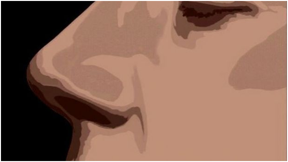 Olores básicos que reconoce el olfato humano