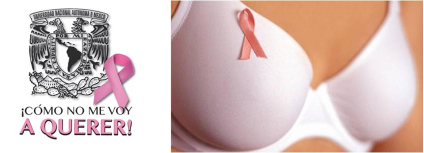 La UNAM y el INCAN implementan métodos para la predicción y detección temprana del cáncer de mama
