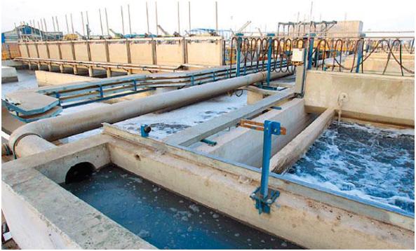 Desarrollan hidrogeles y criogeles de quitosano para tratar aguas contaminadas