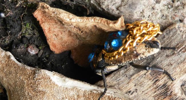 El Maquech, una artesanía con historia