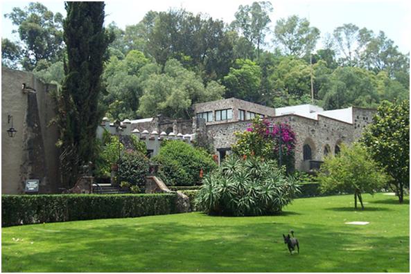 Exposiciones y renovaci n del museo dolores olmedo for Jardines olmedo