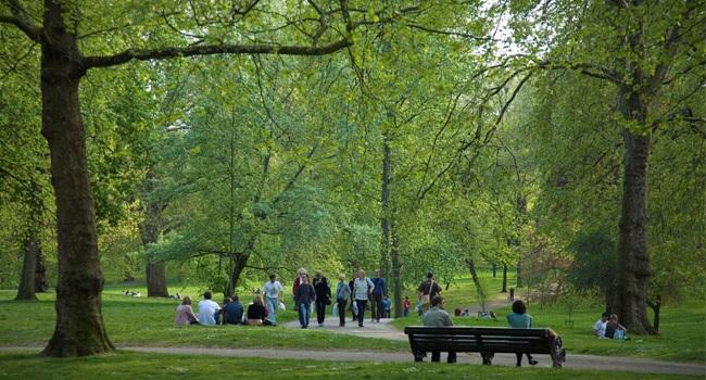 Áreas verdes contra el estrés