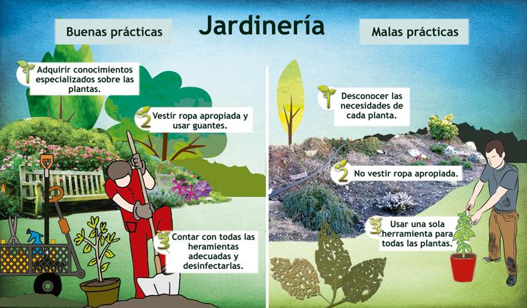 Ciencia para formar a los buenos jardineros descubre - Trabajo de jardinero en madrid ...
