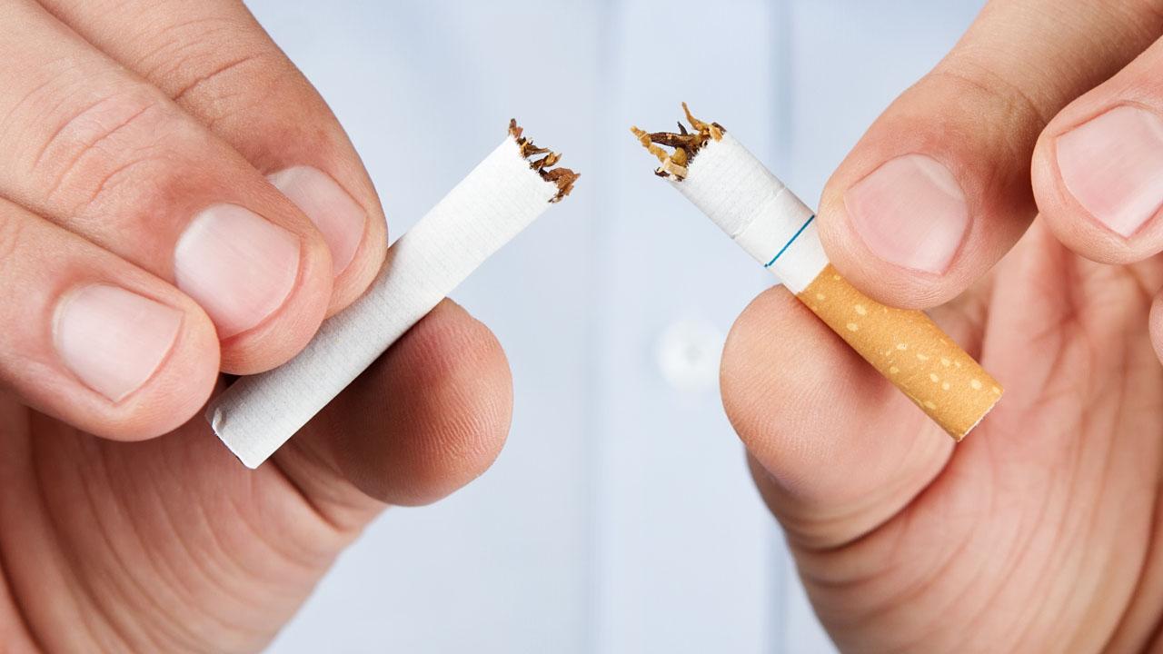tabaco_contenido1
