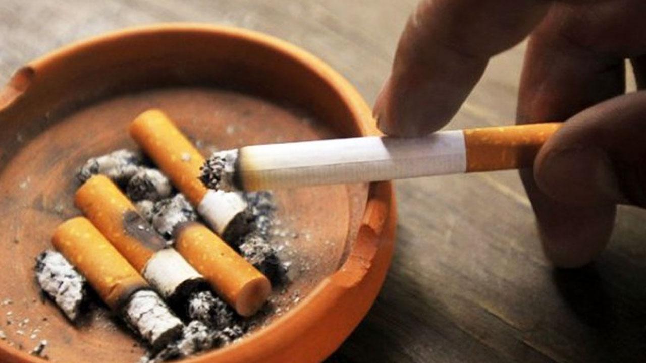 tabaco_contenido2